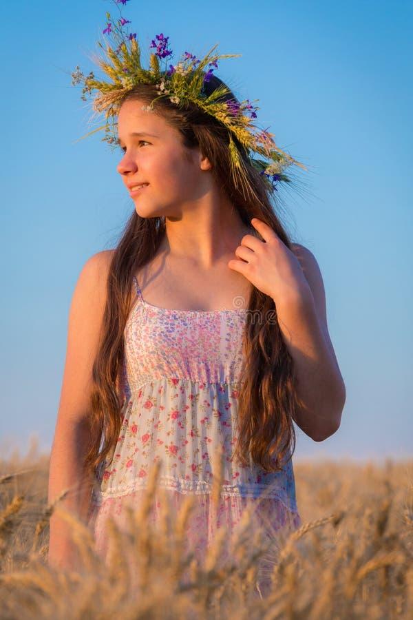 Chica joven que mira a la puesta del sol en campo de trigo fotos de archivo
