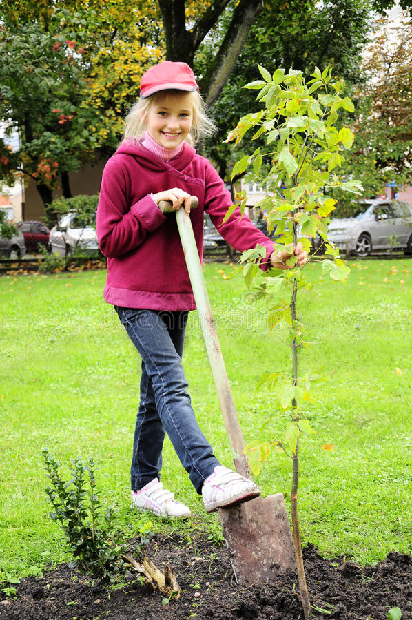 Chica joven que planta el árbol en el jardín foto de archivo libre de regalías