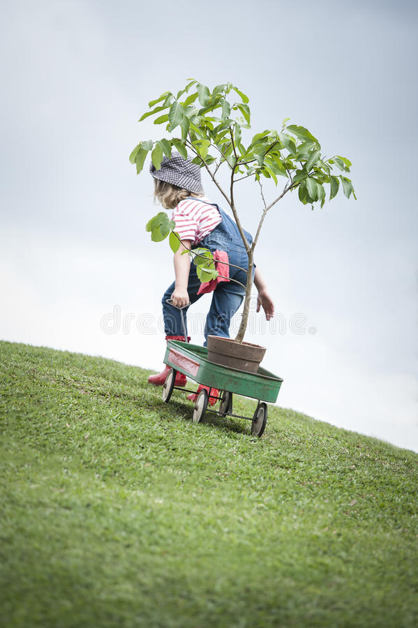 Chica joven que planta el árbol en el parque eco-enterado foto de archivo libre de regalías