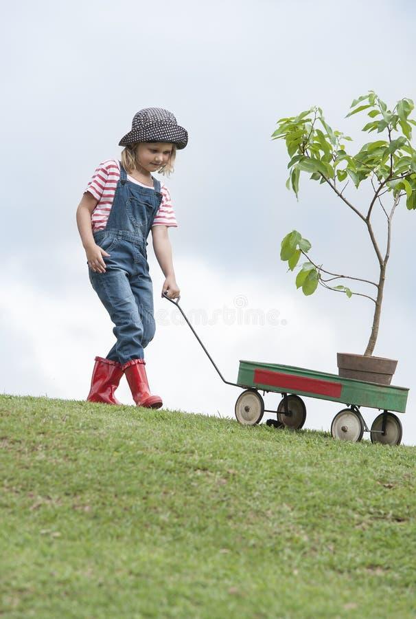Chica joven que planta el árbol en el parque eco-enterado imagen de archivo
