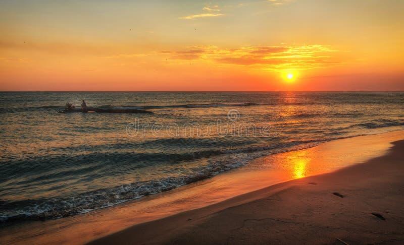 Chica joven que se sienta en el árbol sobre la agua de mar en la puesta del sol fotos de archivo libres de regalías