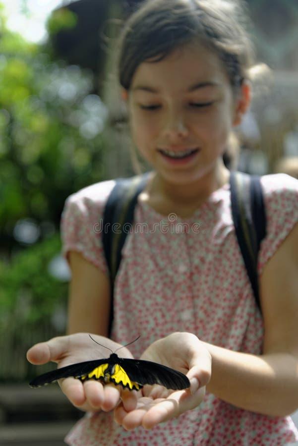 Chica joven que sostiene la mariposa foto de archivo