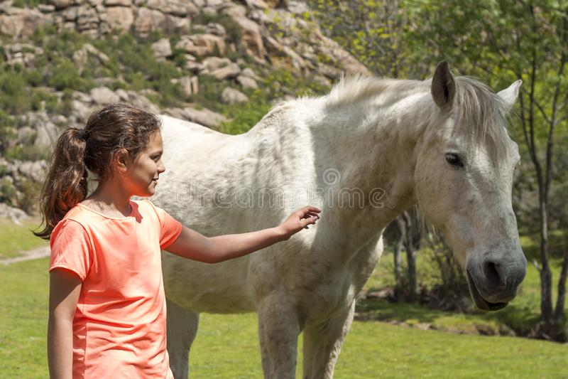 Chica joven que toca un caballo salvaje imagen de archivo libre de regalías