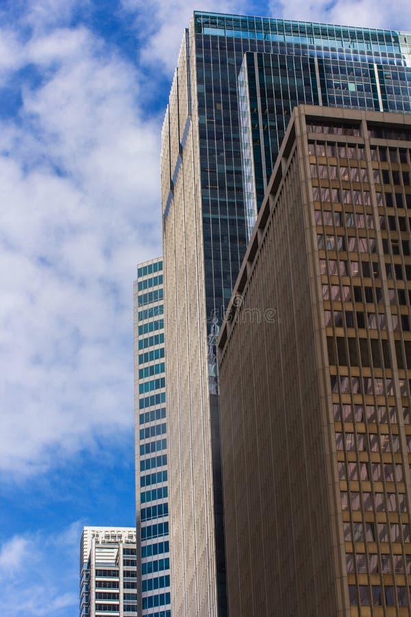 chicago Взгляд к небоскребам стоковое изображение rf