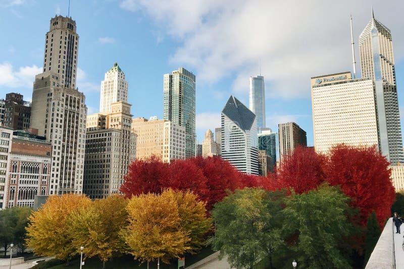 chicago immagine stock