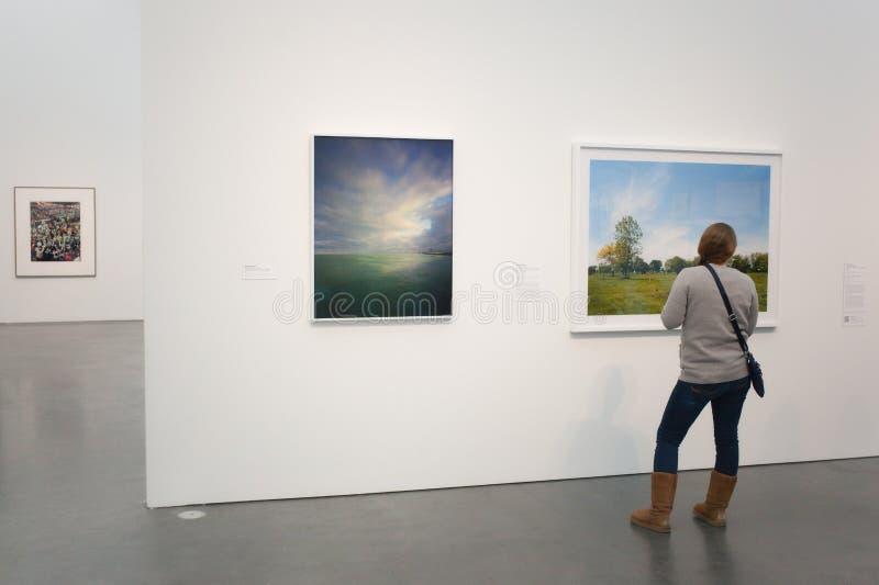 Chicago Art Museum stock afbeeldingen