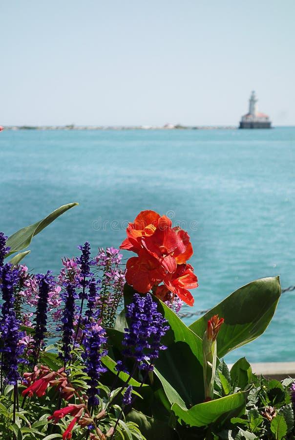 Chicago blommor på marinpir royaltyfria foton