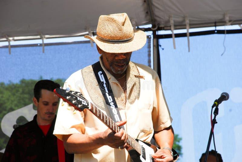 Chicago Blues Festival stock photo