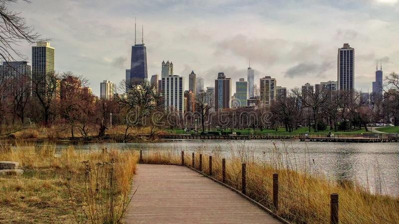 Chicago cityscape on a cloudy day, as seen from South Pond Nature Boardwalk in the Lincoln Park neighborhood. Urban landscape. royalty free stock image