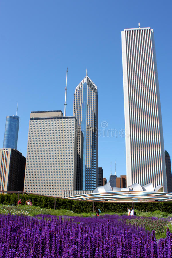 Chicago the Clean City royalty free stock image