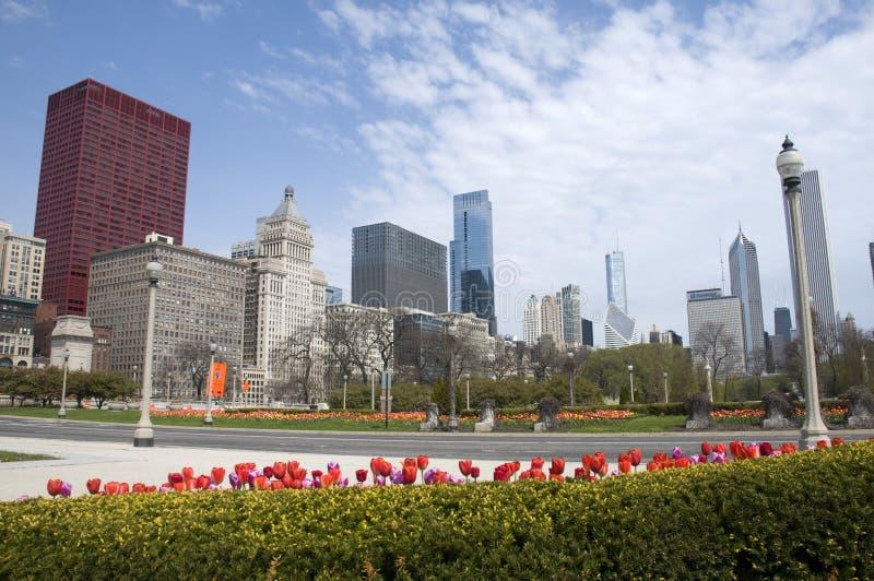 chicago fjäder arkivbilder