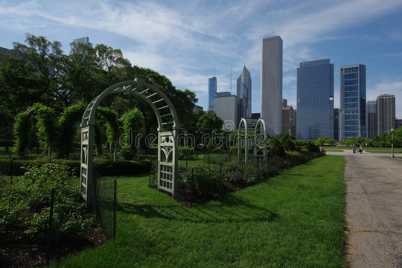 Chicago Grant Park and city skyline. royalty free stock images