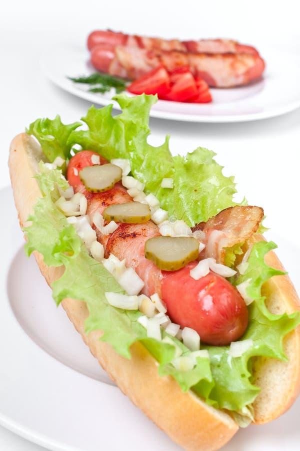 chicago hotdog arkivfoto