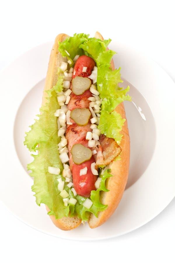 chicago hotdog royaltyfria foton