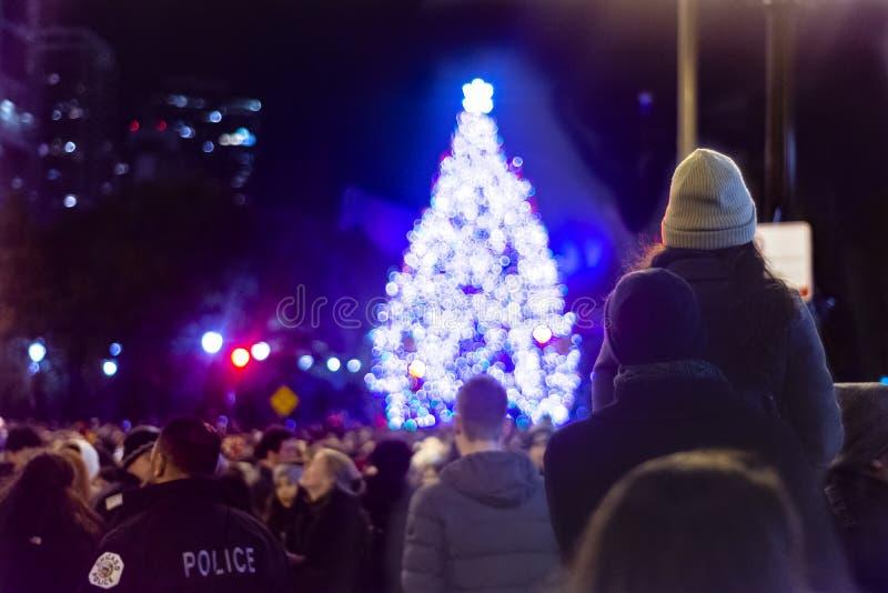 Chicago IL, Förenta staterna - November 16, 2018: Par som ser en julgran efter den 105. årliga Chicago julgranen royaltyfri fotografi