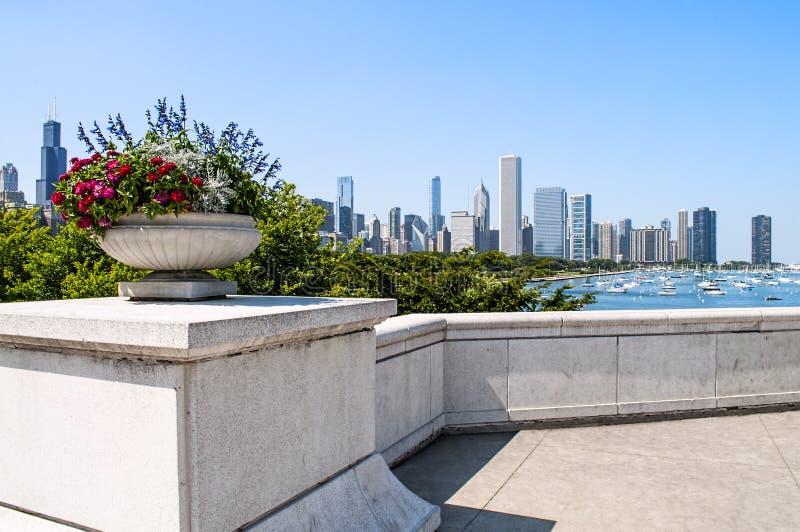 chicago illinois horisont royaltyfri bild