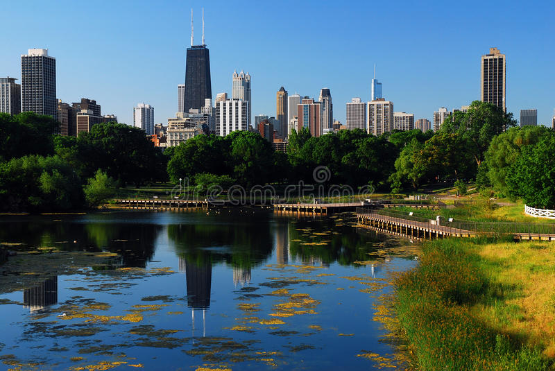 Chicago from Lincoln Park. The skyline of Chicago rises and is reflected in a lake in Lincoln Park stock image