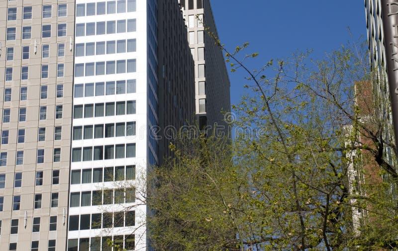 Chicago med den blåa skyen royaltyfri bild