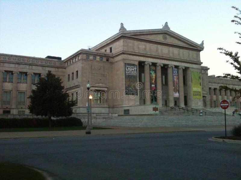 Chicago museum royaltyfria bilder