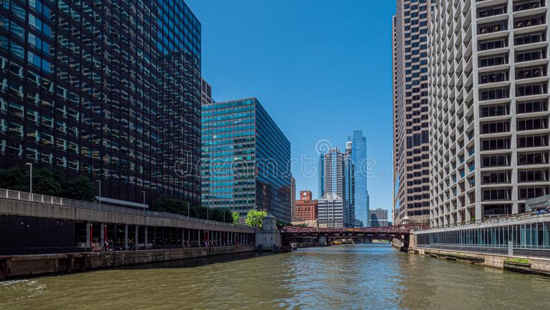 Chicago River på en solig dag - CHICAGO, USA - JUNI 12, 2019 fotografering för bildbyråer