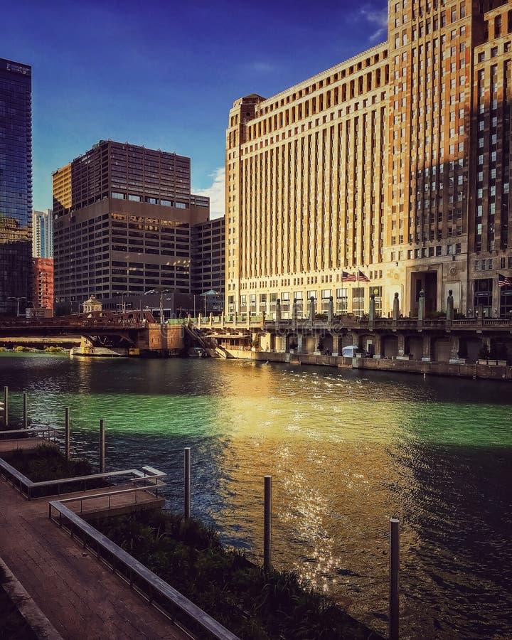 Chicago River Reflexionen von Gebäuden auf dem grünen Wasser stockbild