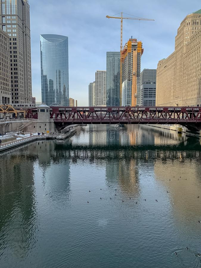 Chicago River scenics with architecture, reflections, ducks, construction royalty free stock photography