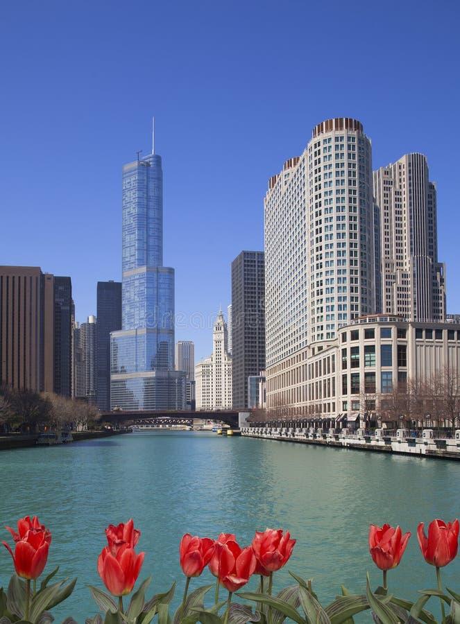 Chicago sjösikt arkivfoton