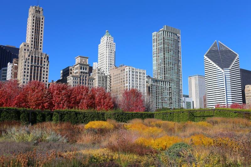 Chicago-Skyline im Herbst lizenzfreie stockfotografie