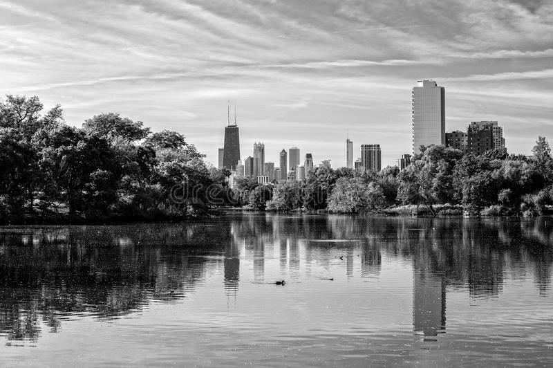 Download Chicago Skyline From Lincoln Park Stock Photo - Image of illinois, water: 39502712