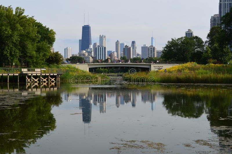 Chicago Skyline with Nature. Tree-lined Lincoln Park offers diverse nightlife, dining and entertainment. North Lincoln Avenue features cocktail lounges, dive