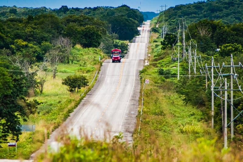 Chicanna, Mexiko - 23. November 2010 Gewellte Straße mit dem Bus, der zwischen Wälder geht lizenzfreie stockfotos