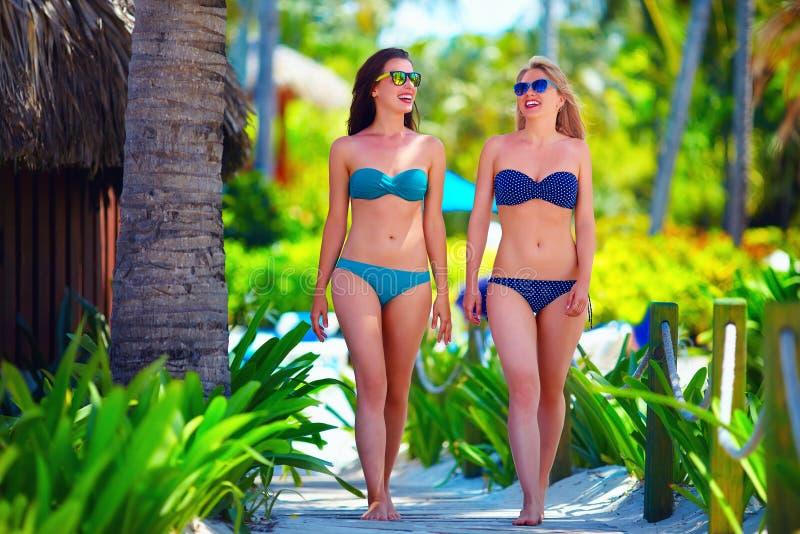 Chicas jóvenes felices que caminan en la playa tropical, durante vacaciones de verano imagen de archivo