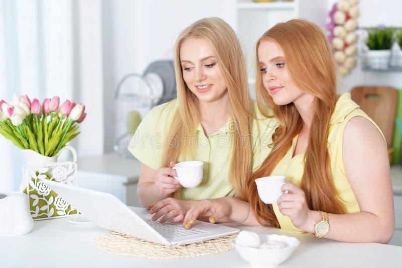 Chicas jóvenes que usan el ordenador portátil imagen de archivo