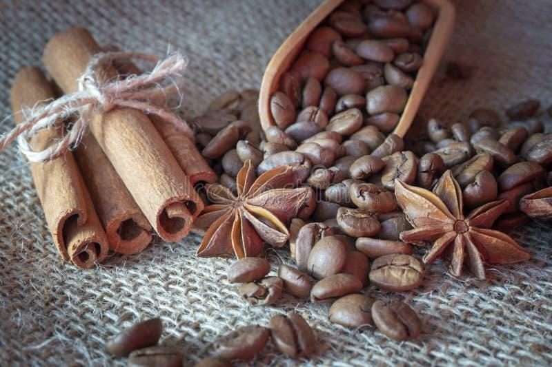 Chicchi, anice stellato e cannella arrostiti di caff? fotografia stock libera da diritti