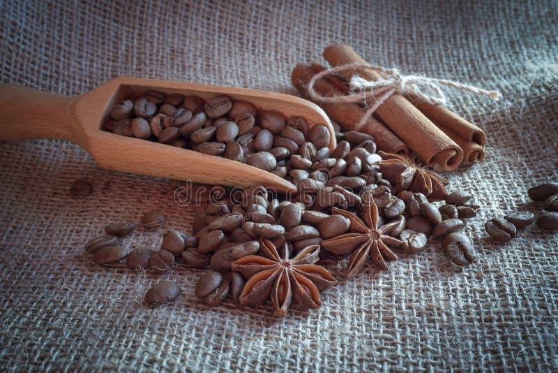 Chicchi, anice stellato e cannella arrostiti di caff? immagine stock libera da diritti