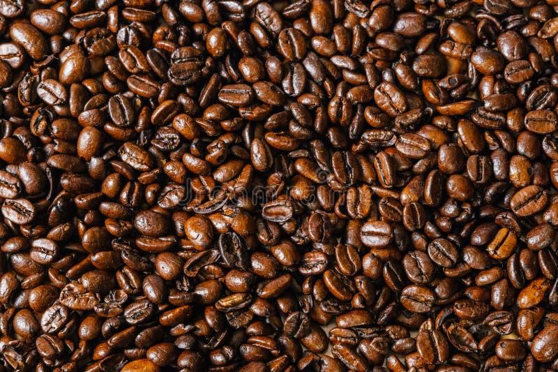 Chicchi di caffè arrostiti fotografie stock