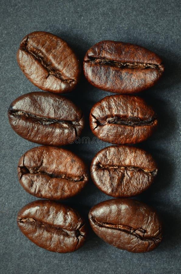 Chicchi di caffè arrostiti immagine stock