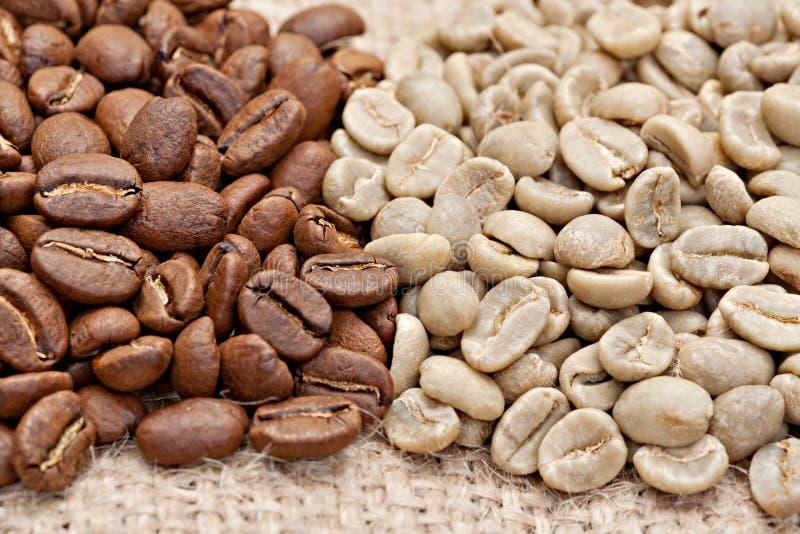 Chicchi di caffè arrostiti e non arrostiti sul licenziamento fotografia stock