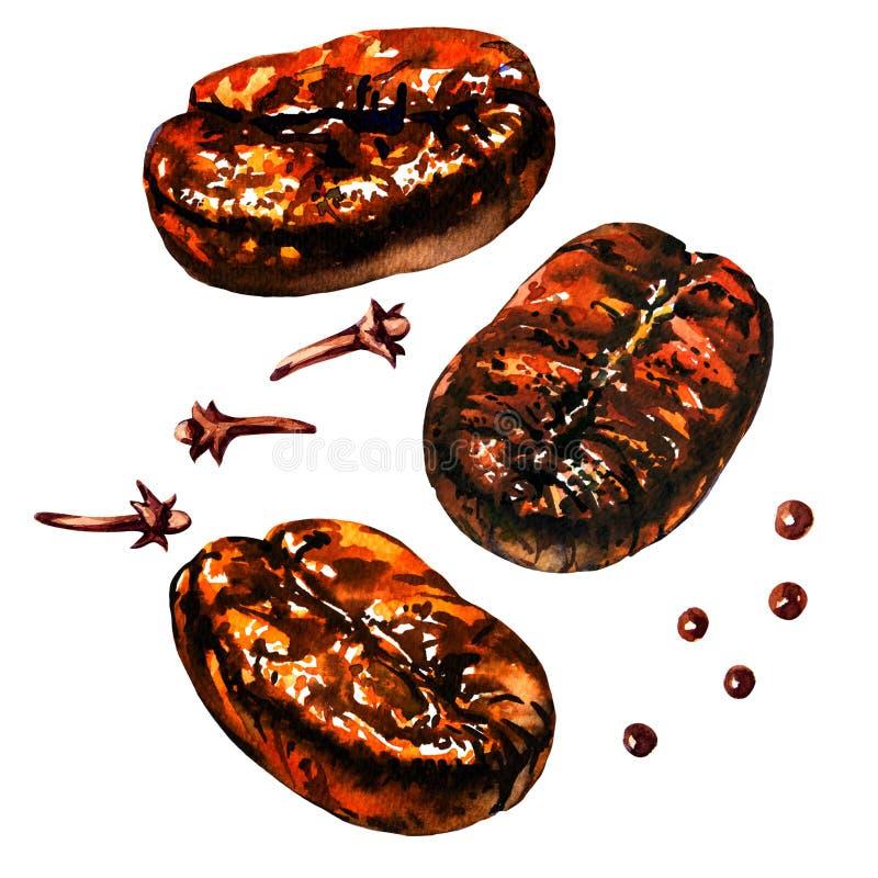 Chicchi di caffè arrostiti freschi con la spezia, il pepe ed i chiodi di garofano, isolati, illustrazione dell'acquerello su bian illustrazione di stock