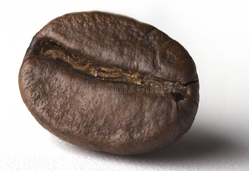 Chicchi di caffè arrostiti isolati su priorità bassa bianca Percorso di ritaglio A profondità totale del campo fotografia stock