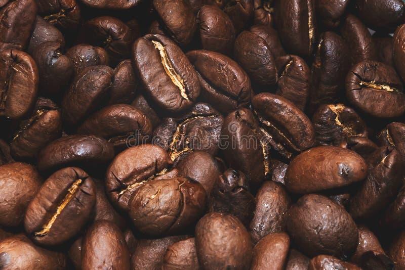 Chicchi di caffè arrostiti modello e fondo immagini stock libere da diritti