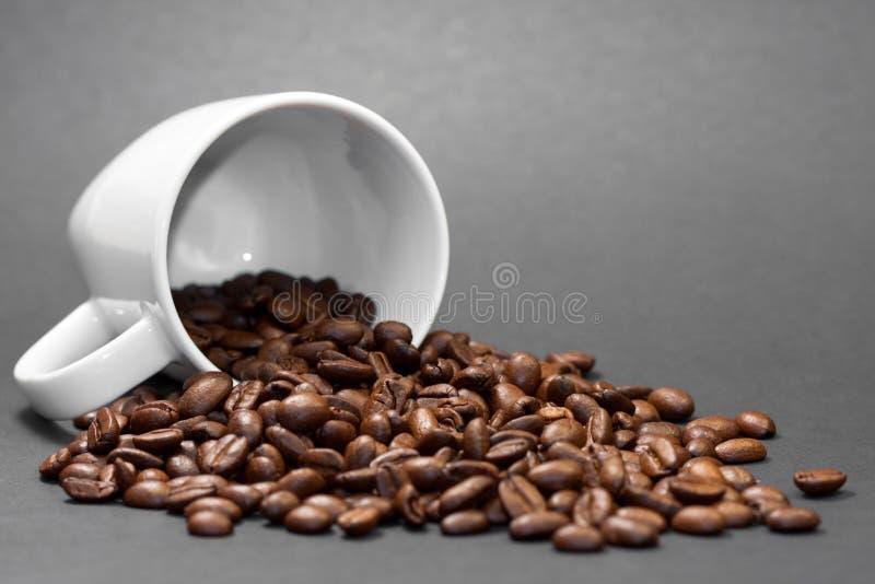 Chicchi di caffè arrostiti di recente a terra con i frutti della pianta del caffè con un fondo nero immagine stock libera da diritti