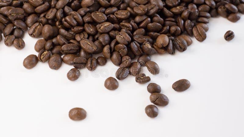 Chicchi di caffè arrostiti sparsi su un fondo bianco fotografia stock
