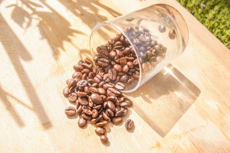 Chicchi di caffè caduti fotografia stock