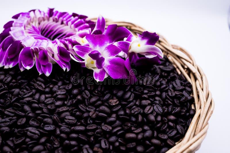 Chicchi di caffè caldi con fumo ed il fiore fotografia stock