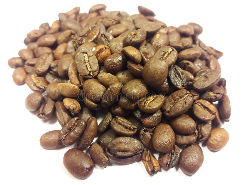 Chicchi di caffè che sono asciugati sul tetto cementato fotografie stock