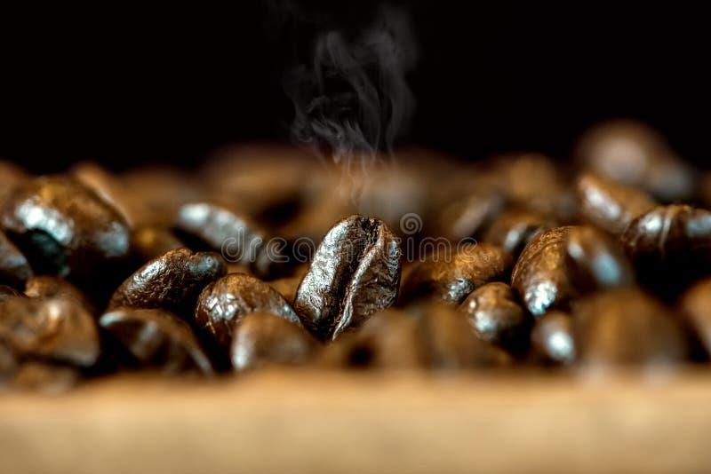 Chicchi di caffè con il fumo di calore Caffeina fresca per il barista che fa bevanda calda immagine stock