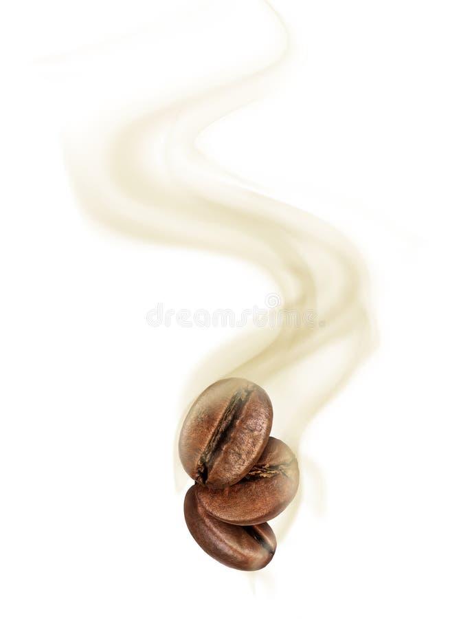 Chicchi di caffè con il primo piano caldo del vapore su fondo bianco immagine stock libera da diritti