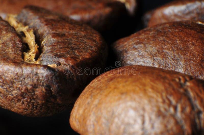 Chicchi di caffè deliziosi gastronomici fotografie stock libere da diritti