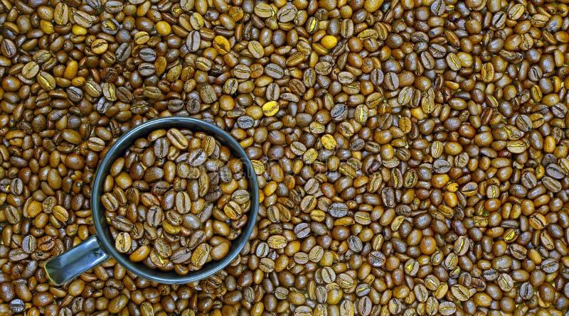 Chicchi di caffè e caffè arrostiti su fotografia stock libera da diritti